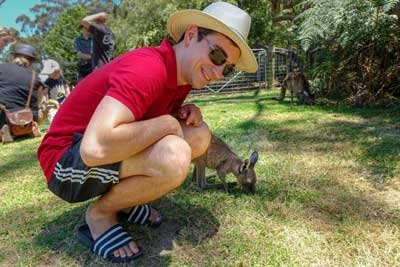 Where Can I Take A Selfie With Kangaroos In Australia?